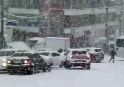 제주교통사고, 공포의 겨울왕국