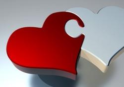 [신간 보고서] 배신·고독·미친 사랑…인간의 복잡한 내면