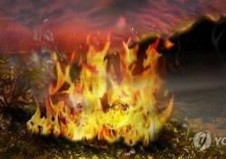 대구 산불, 20일 만에 또?…건조한 날씨가 문제?