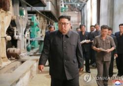 남북 통일농구, 김정은 관전 가능성? 北 부위원장이 대신 온 이유는...