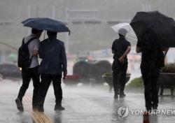 [내일 날씨] 태풍제비 영향? 오전까지 폭우..외출 시 주의할 점은?