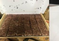 풀무원 식중독 케이크, 달콤한 간식의 위험한 변신...유통 규모만 6200여 박스