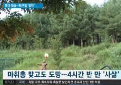 """대전서 탈출한 퓨마 결국 사살… 처음 아닌 동물 사고 """"인간이 문제"""""""