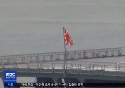 """日, 욱일기 논란에 """"안 가겠다"""" 통보? 나치 문양은 사용시 처벌 받는데…"""