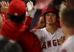 [MLB] '이도류' 오타니, 일본인 역대 4호 신인왕 유력