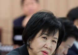 재벌구단이라서?…손혜원 말 한마디가 부른 후폭풍
