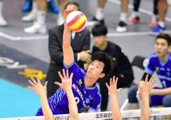 [V리그] 대한항공, KB손해보험 꺾고 시즌 첫 승