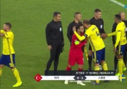 '스웨덴 PK골 득점' 터키에게 0-1 승리