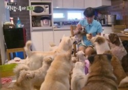 """이용녀 안락사 논란 박소연에 """"수십억은 어디에?""""… 犬 위해 '재산탕진'한 그의 일침"""