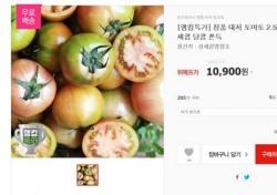"""위메프 랭킹특가, """"다이어터들 모여러""""...'미우새' 등장한 대저토마토 등장"""