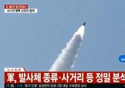 """""""북한, 불상 발사체 발사 의도? 충격 효과 높이기 위해"""""""