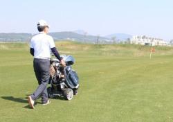 캐디 선택 가능한 골프장 115개소, 전체 21.6%