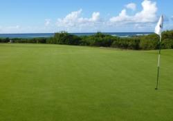 [백상현의 세계 100대 골프 여행] 하와이의 낙원 터틀베이