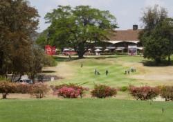 [백상현의 세계 100대 골프 여행] 케냐의 보물 카렌 & 윈저