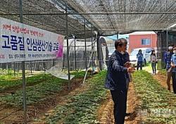 상주시 친환경인증 '인삼' 재배면적  58㏊  전국 1위...