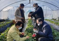 경북농협  한파 피해 농가 지원 나서