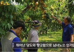 의성군, 농업인실용교육 유튜브를 통한 비대면으로...코로나19 재확산 방지