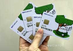 카드형 영주사랑상품권 출시…