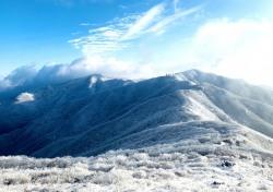 한국의 알프스 소백산 철쭉 관리위해 민·관 비대면 화상회의 열려