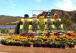 올해 10월에 열리는 상주 국화전시회 명칭 '국화꽃향기, 스무번째 이야기' 로 선정