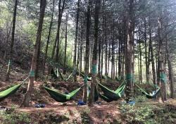 올봄 힐링 여행은 국립산림치유원에서...개인고객 프로그램 개편