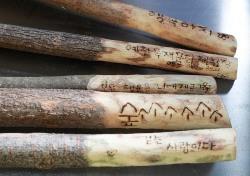 가지치기로 버려진 나뭇가지가 등산용 지팡이로 변신?
