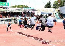 코로나19 확산방지…안동시 하반기 예정된 각종 체육대회 취소·연기