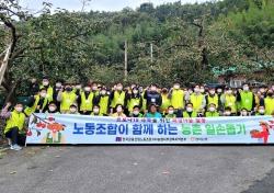 경북농협 노동조합, 수확기 농촌 일손돕기 구슬땀