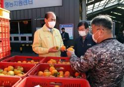 일찍찾아온 추위에  곶감 원료 떫은감 수매 바쁘다 바빠…20kg기준 1상자 4만 4000원 거래