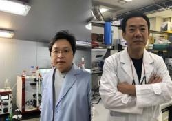 DGIST, 뇌로 유입된 미세플라스틱으로 인한 세포 사멸 원인·과정 규명