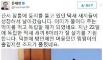'퍼스트캣' 찡찡이, 靑 '출입제한' 해제