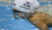 안세현, 세계 접영 200m '나비의 춤'