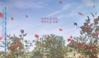 '백일의 낭군님', 일본 지상파 NHK 5월 방송