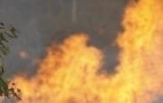 200명 다친 송유관 폭발, 절도범이...