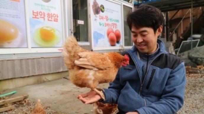 """[리얼푸드]""""닭은 스스로 씻죠…살충제 필..."""