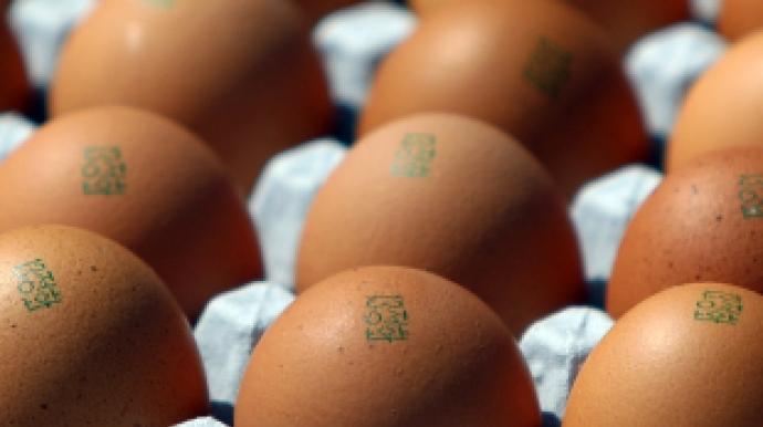 """살충제 계란 번호 언제든 조작가능 """"스탬..."""