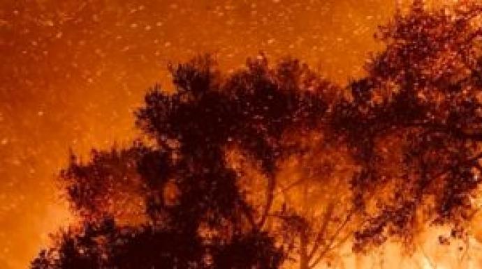 울산 산불, 건조한 바람 타고 활활…불길...