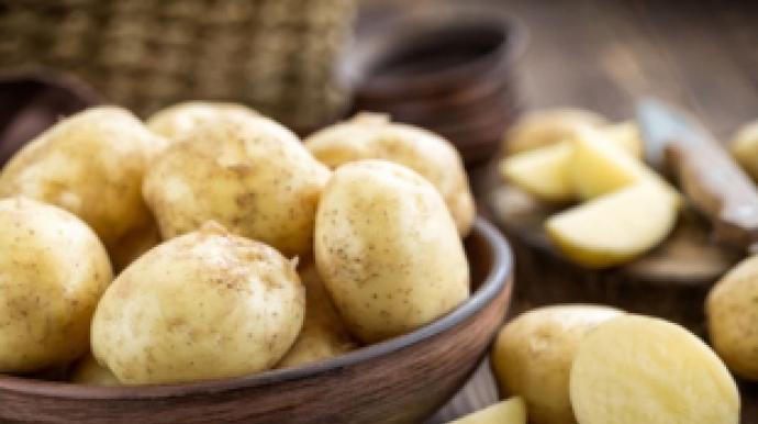 [리얼푸드]알칼리성 식품은 뭐가 있을까?
