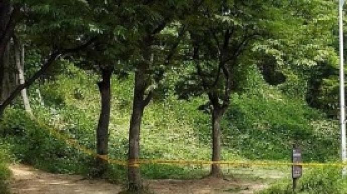 서울대공원 인근 수풀서 발견된 토막시신...