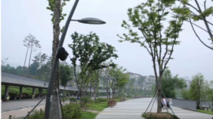 """""""광교 확진자 원성 고조""""..광교맘카페 ..."""