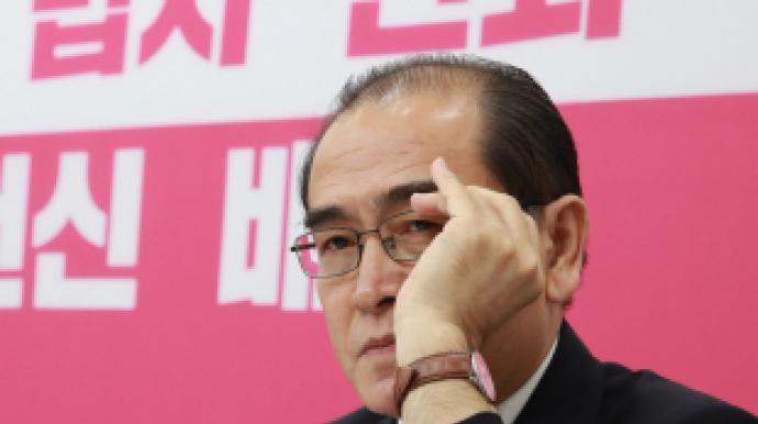 """태영호 """"대북전단, '김정은 남매'에 '..."""
