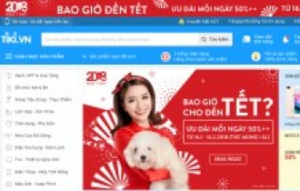 SparkLabs invests in Vietnamese e-commerce firm Tiki