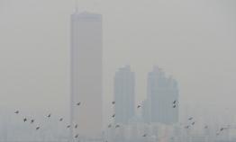 Seoul mayor pledges free public transportation to combat fine dust
