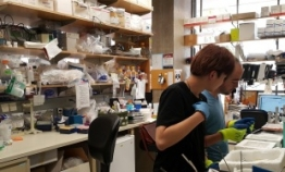 Strong scientific research underpins biotech boom in San Diego