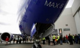 S. Korea bans B737 Max flights for 3 months
