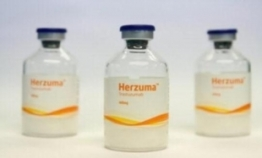 Celltrion's Herzuma receives sales approval in Canada