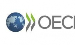 S. Korea marks one of the sharpest falls in potential growth rate: OECD