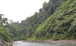 Korean hydropower project in Solomon Islands wins $240m investment pledge