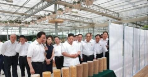 """끝까지…""""시진핑, 김정은에 종전선언 보류 촉구"""""""