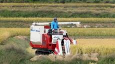 재배면적 줄고, 불량볍씨에, 태풍에 … 올해 쌀 농사 잘돼야 하는데